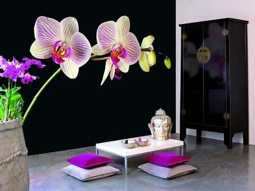 Фотообои в интерьере - Black orchid - цветы - 8-панельные.